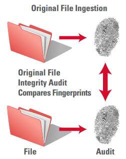File Fingerprinting and Integrity Audit